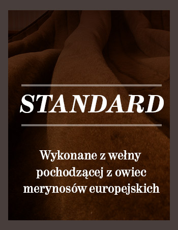 banner_home-standard
